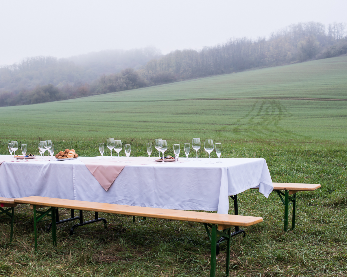 Lunch Table in Field