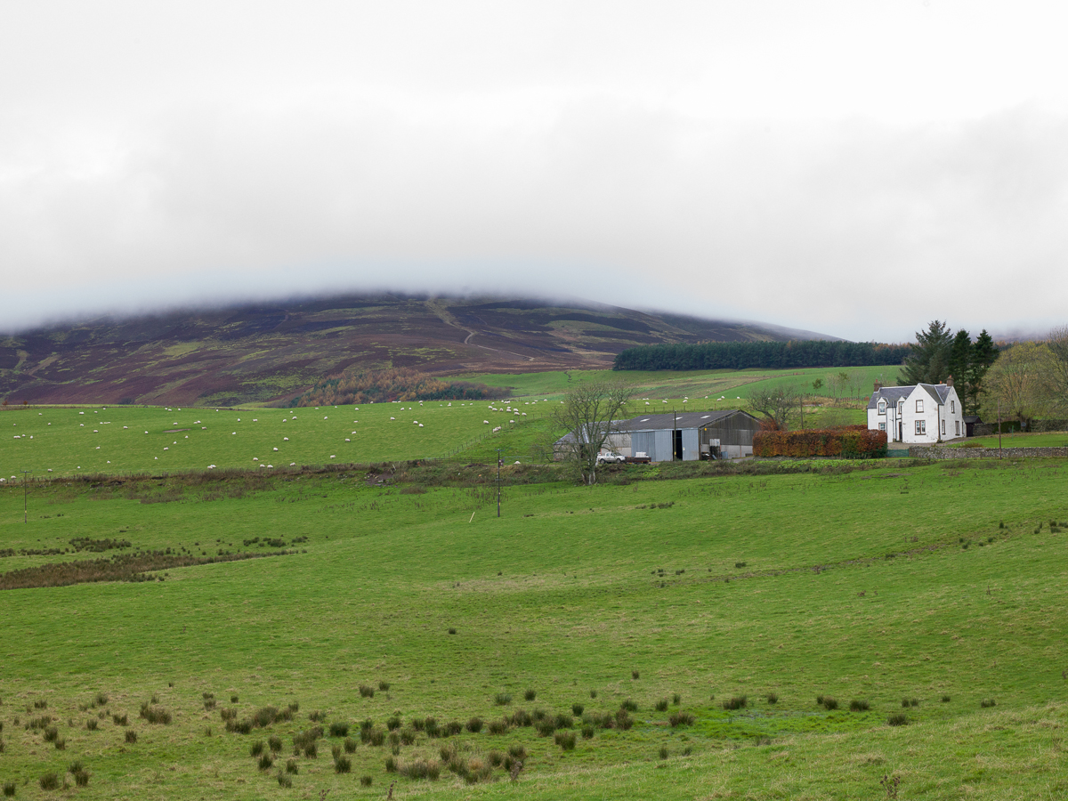 White Farm House